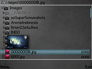 x-plore cracked0232.jpg